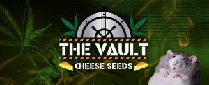 cheese_seeds_banner