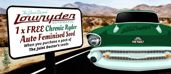 FREE_Chronic Ryder Auto Feminised Seed