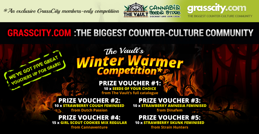 The Vault's Winter Warmer Competition: Exclusive for Grasscity members