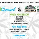 The Vault and 420 Connect Promotion