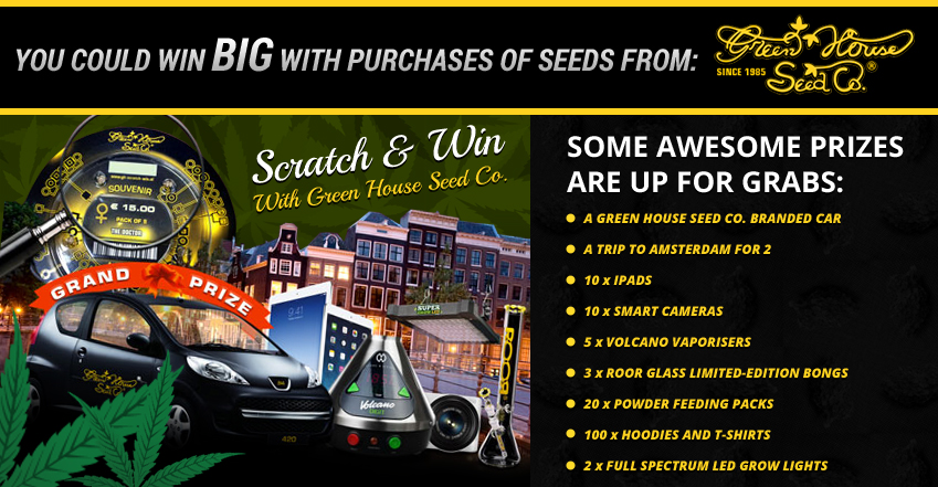 Vault Seeds - Greenhouse Seeds Co. Promo