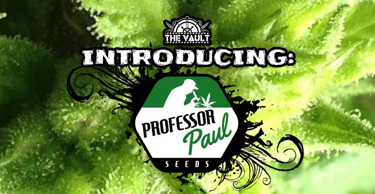 Professor_Paul_Intro_blog