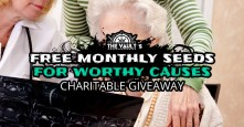 The_Vaults_Freebie_Promo_Giveaway
