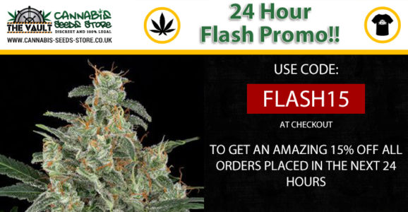 24 hour Flash Promo at The Vault now live!