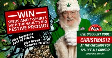 The Vault Cannabis Seeds Store 2017 Christmas Promo
