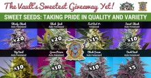 Win 100 Awesome Seeds with The Vault and Sweet Seeds!