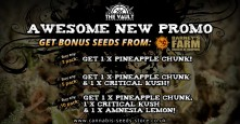 Awesome New Promo: Bonus Seeds from Barney's Farm!