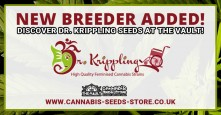 Dr. Krippling Seeds: Available Now at The Vault!