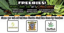New Freebies – Orders over £100 get 3 FREE PREMIUM SEEDS