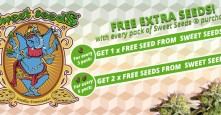 FREE Sweet Seeds ® with every pack purchased