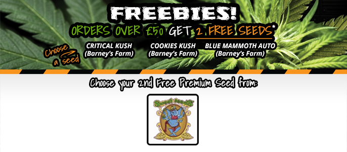 Free Sweet Seeds Cannabis Seeds
