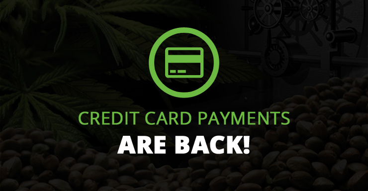 Buy Cannabis Seeds with Credit Card