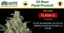 Flash Offer – 24 Hour 15% Discount! Get Your Code Here!