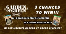 Garden of Green – 75 Seeds up for Grabs
