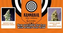Kannabia Freebies – Spend £100 to Get Free Seeds