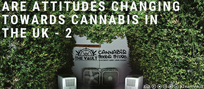 CBD Hope Cannabis Story