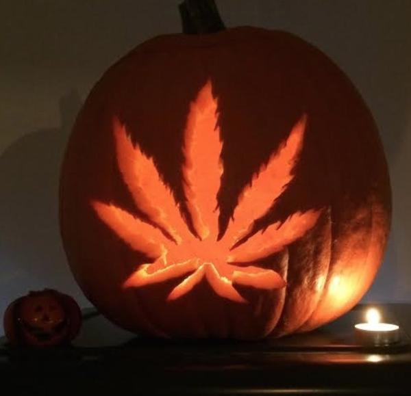 Cannabis Pumpkin