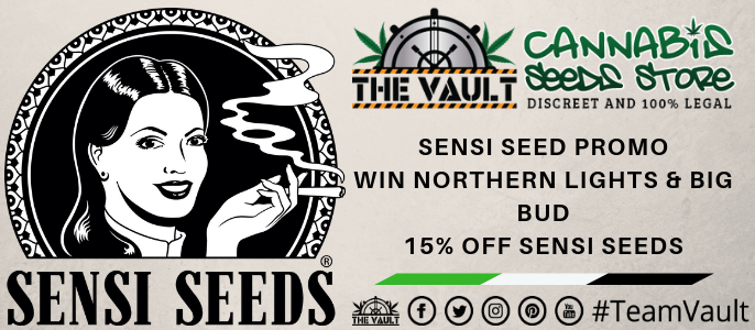 Sensi Cannabis Seeds