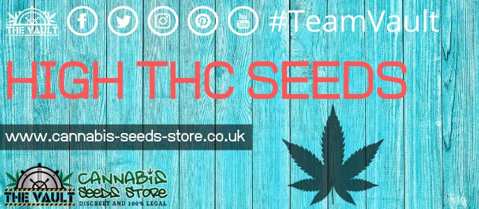 THC Cannabis Seeds