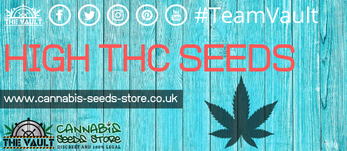 THC Cannabis Seeds