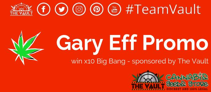 Gary Eff Cannabis Marketer