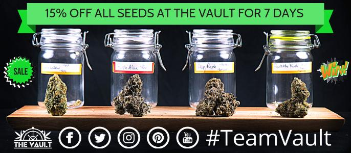 Cannabis Seeds Promotion