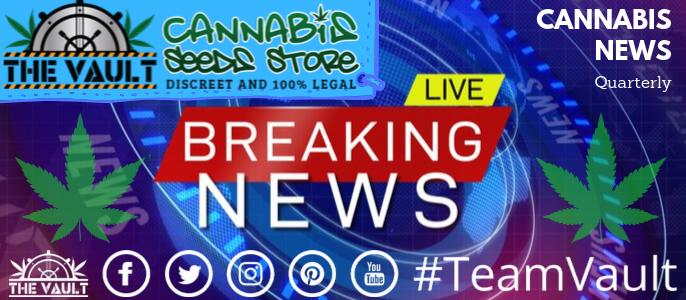 Cannabis Seeds News