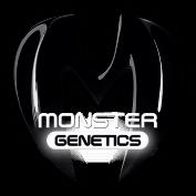 Monster Genetics Cannabis Seeds