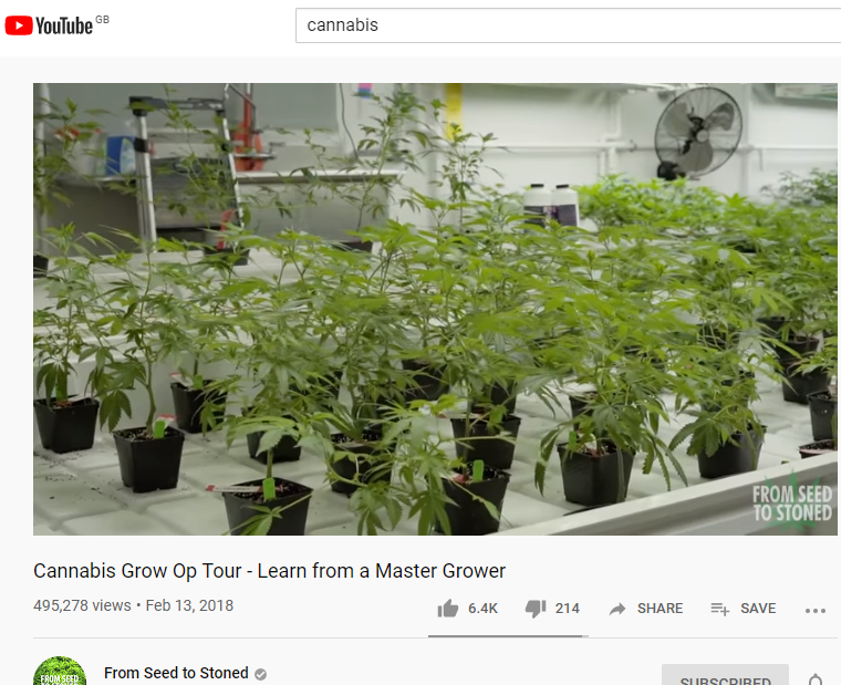 Cannabis grow op tour