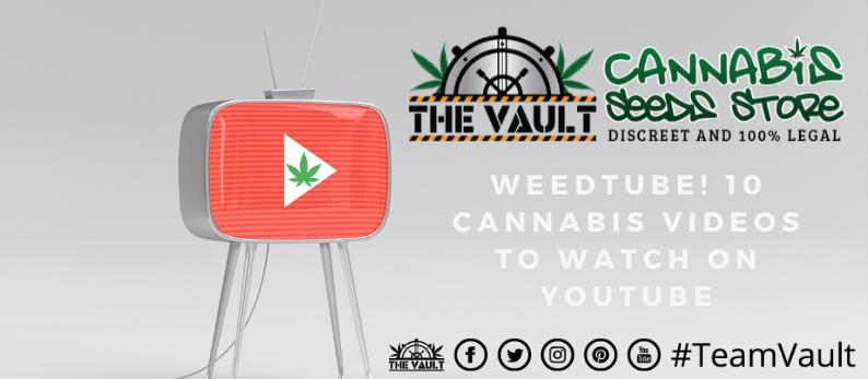 Cannabis on YouTube