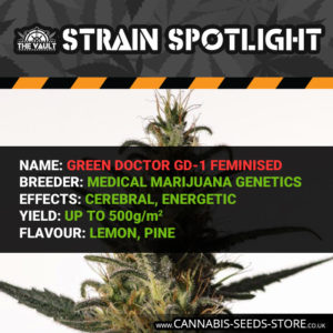 Strain Spotlight: Green Doctor GD1 (MMG)