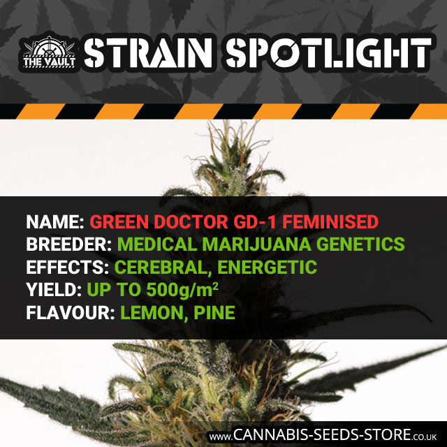 Strain spotlight on Green Doctor GD1