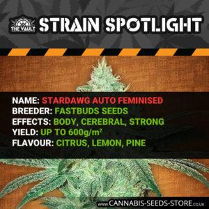 Strain Spotlight: Stardawg Autoflowering Feminised