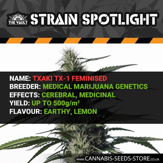 Txaki (TX-1) Feminised Seeds