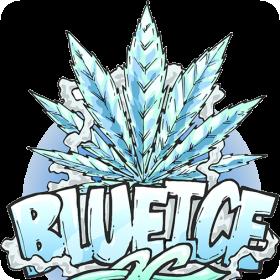 Blue Ice OG Fem