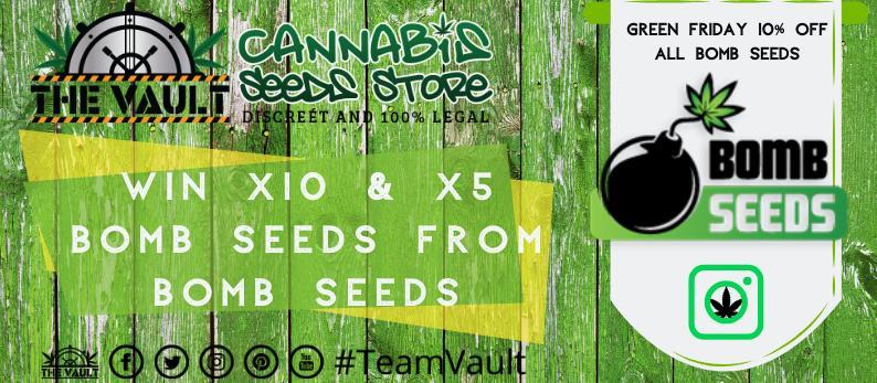 Bomb Cannabis Seeds
