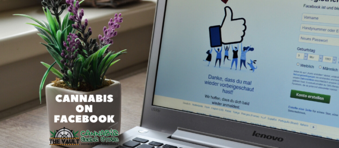 Cannabis Seeds on Facebook