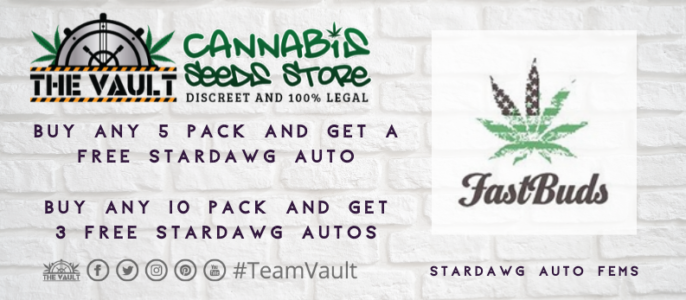 Fastbuds Seeds – Bonus Freebies at The Vault