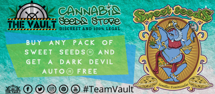 Sweet Seeds – Bonus Freebies at The Vault