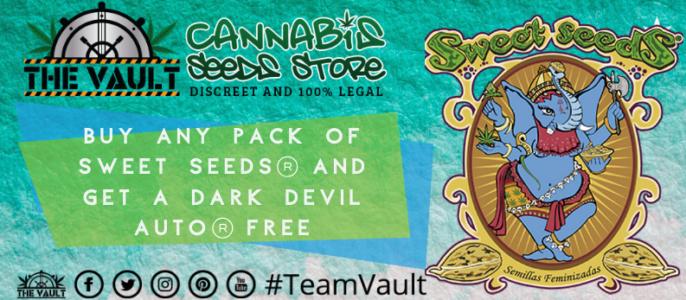 Sweet Seeds – Bonus Freebies at The Vault