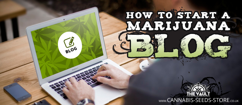 How to start a Marijuana Blog