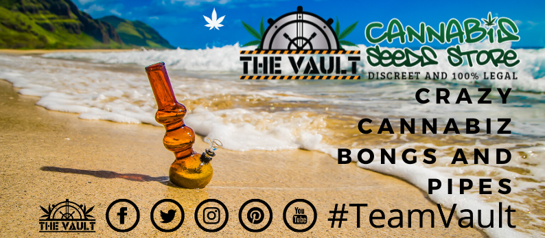 Cannabis Bongs & Pipes