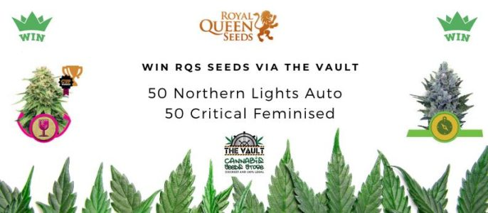 Royal Queen Seeds Promo at The Vault