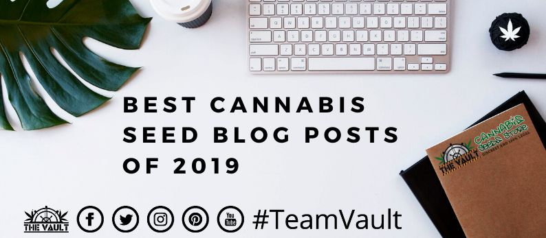 Best Cannabis Seeds blog Posts of 2019