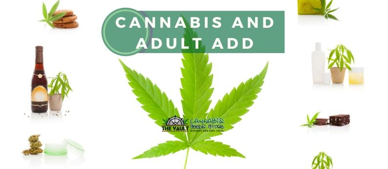 Cannabis and Adult ADD