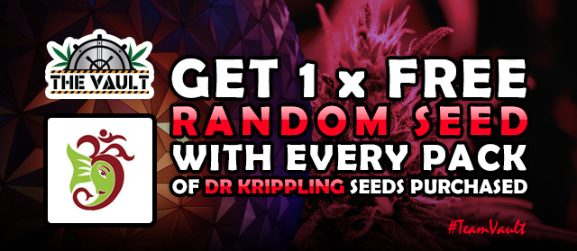 Buy Dr Krippling Seeds get FREE Dr Krippling Seeds