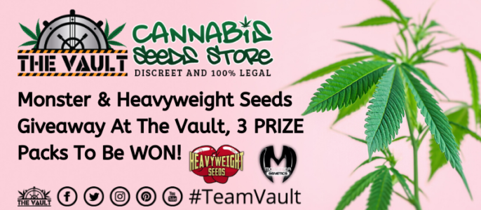 Heavyweight Seeds and Monster Genetics Giveaway