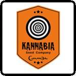 Kannabia Cannabis Seeds
