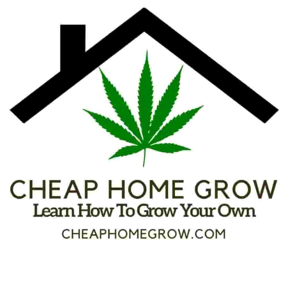Cheap Home Grow - Best Cannabis Growing Podcast 2020