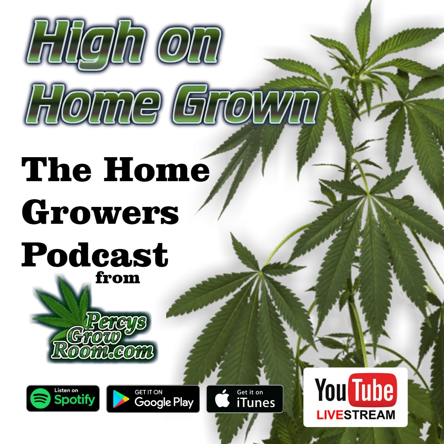 high on homegrown - Best Cannabis Growing Podcast 2020